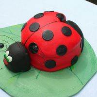 Ladybug Cake This was a fun cake to make and it was a hit with the birthday girl.