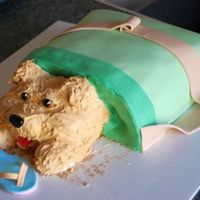 Tote-Ally Naughty This was my first attempt at carving a cake. I got this idea because my puppy has chewed up 2 pairs of my sandals. The flip flop is made...