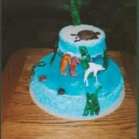 Ocean Cake This was one of my first cakes. It was very humid so the piping gel weighted it and the icing on the sides began to slide. I also ran out...