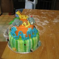 Zoo Cake  This is the first cake I have made. It was for my sons first birthday party with a zoo theme. It turned out pretty good, I made MMF to...