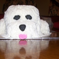 White Dog My first attempt at carving a 3D cake. I wanted to try one after seeing so many here on CC. Thank you for all the inspiration! Made this...