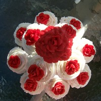Cupcake Bouquet These were for my daughter's BBQ she had with a few of her friends. TFL.