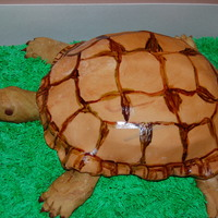 Turtle Cake This cake was made for my son's reptile birthday.