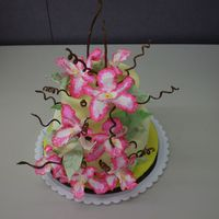 Wilton Fondant And Gum Paste Class This was the cake for my final. It was my first attempt to make gum paste orchids! Cakes covered in fondant with lemon yellow. Colors used...