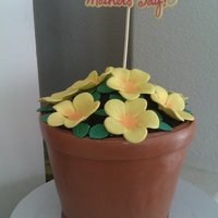 Flower Pot Cake Flower pot cake with fondant flowers. Carved to the shape of a pot and covered in MMF.