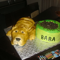 "Sharpei And Bowl Of Food Cake!! this is a cake i made for my brother bday! he has a sharpei dog named ""Baba"", bowl is chocolate mud cake and the dog RKT, all..."
