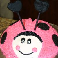 Pink Ladybug This is my first cake. It is eggless (my son has an allergy) and covered with BC. The antenna are made with sugar cookies and cookie pop...
