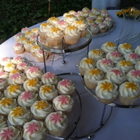 Wedding Cupcakes For Chris And Meg   White choc w/ raspberry filling. bc frosting. each had it's own little fondant flower