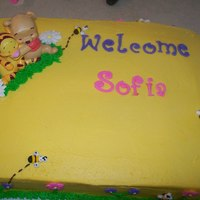 Baby Pooh Shower Cake   11x16 marble BC cake with royal icing flowers and fondant letters
