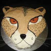 Cheetah Cake   For a litte girl's birthday