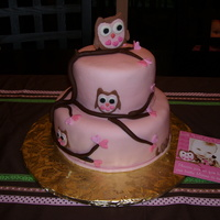 Owl Cake For One Year Old white and chocolate with buttercream. Fondant covered! TFL
