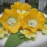 Yellow, White And Green Two Tier