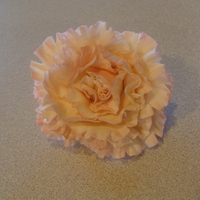 Light Pink Carnation   sugar paste carnation large variety