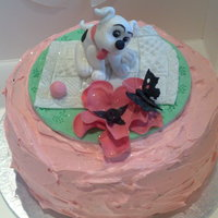 Curious Puppy a birthday cake made for my nephews girlfriend I had a bit of trouble with the butterfly when putting the cake in the box but she loved it...