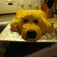 Dog Cake   fondant nose and around the eyes which are peanut mms. the cake is a 9x13 and a half of sports ball