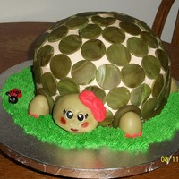 Turtle   buttercream w fondant accents, tutrle cake(chocolate cake w carmel and pecan filling