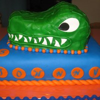 "Gator Cake I made this cake for my little cousin's 5th Birthday Party! He is so young but already a HUGE gator fan and wanted a ""real""..."