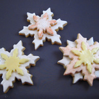 Snowflake Nfsc W/fondant My first attempt at painting with luster dust on fontant...still need some work there, but everyone said they TASTED good!