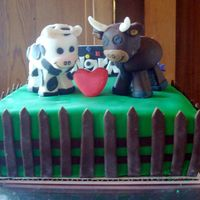 Cow Bridal Shower Cake made this for some cow farmers who are getting married