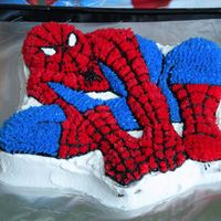 Superman This cake was for the neighbor's 5th birthday......his favorite part was eating Spidey's face !!