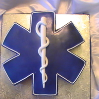 The Star Of Life! EMS