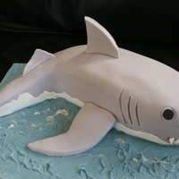 Shark Thanks to all the other Shark cakes on CC for the inspiration. I carved this from a 30cm loaf tin and a 4inch square, chocolate cake...