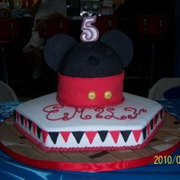 Emily's 5Th Triple chocolate cake, ball is cake, ears are fondant. TFL!
