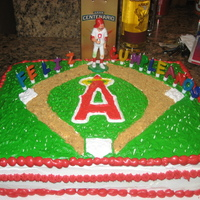Angels Birthday Cake   for my godfather. my first sheet cake with a full design