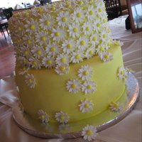 Martha Stewart Design Inspired Bridal Cake Customer showed me a pic of a martha stewart wedding cake and said she wanted a two tiered version for her bridal shower. I cut over four...