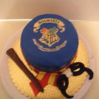 Harry Potter Cake Harry Potter logo with want and glasses