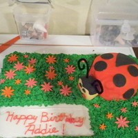 Ladybug Cake all bc except the ladybug and its rct covered in fondant