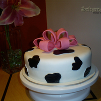 Cow Cake my first bow