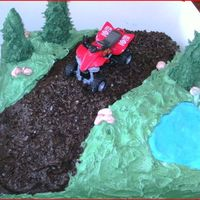 Quad Bike Party chocolate cake covered in bc, trees icecream cones with royal icing and pond is fondent. tfl xx