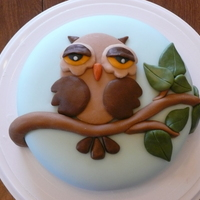 Owl Cake! Inspired by many different owl cakes I have seen on CC. 8 in cherry cake with homemade fondant. TFL!!!