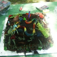 Bugs my nephew had a bug birthday party . This is a chocolate fudge marble cake with chocolate pudding and oreo cookie crumb filling...lots of...