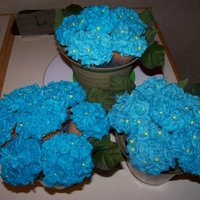 Blue Cupcake Bouquet Eighteen WASC cupcakes with don't-try-this-again blue raspberry lemonade BC for a baby shower.