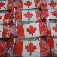 Canadian Flag Cookies