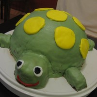 Turtlecake Simple chocolate cake... turned into a turtle. I made a few little cakes in small childrens backing pans for the feet, head and tail. Just...