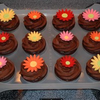 Daisy Cupcakes These are chocolate cupcakes made from the Darn Good Chocolate Cake recipe with chocolate buttercream and white cake cupcakes with classic...