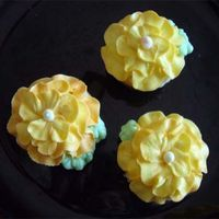 Flower Cupcakes Flower cupcakes for our end of summer celebration. I'm very new to decorating so these are special.