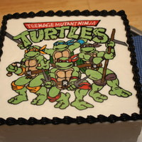 "Teenage Mutant Ninja Turtles 8"" square dummy with frozen buttercream transfer of a promotional image from the Teenage Mutant Ninja Turtles TV series. I found the..."