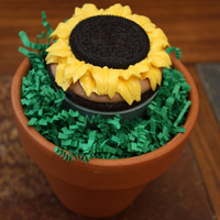 Sunflower W/ Oreo DH Dark Chocolate Fudge cuppie with IMBC icing and Oreo cookie on top. Many thanks to KHalstead for sharing her info on cupcake bouquets....