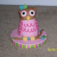 Birthday Owl This was a cake for a little girl's first birthday and was made to match her invitations.