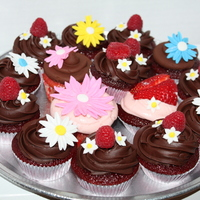 Spring Cuppies red velvet & strawberry cupcakes with ganache