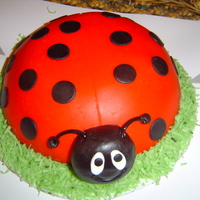 Ladybug Birthday I needed a quick birthday cake for a last minute order. Took my Debbie Brown book and found this one. Made a chocolate snowball cake and...
