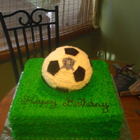 Soccer Ball Cake Chocolate cake with chocolate fudge mousse filling. BC used for all decorations.This cake was a 9 year old boy who loves soccer.