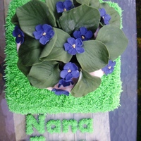 African Violet Pot Plant My mum loves African Violet plants so I made this out of fondant for her. Everything is edible