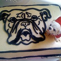 Bulldog Sheet Cake just a vanillabean buttercream sheet cake with a bull dog image hand made out of black fondant...