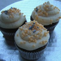 Chocolate Pumpkin Mini's chocolate midnight cc with pumpkin spice butter cream and orange flavored sprinkles