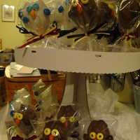 Owl Cake Pops Owl Cake Pops for a Harry Potter Themed Birthday Party. Ribbon are Hogwarts House Colors.